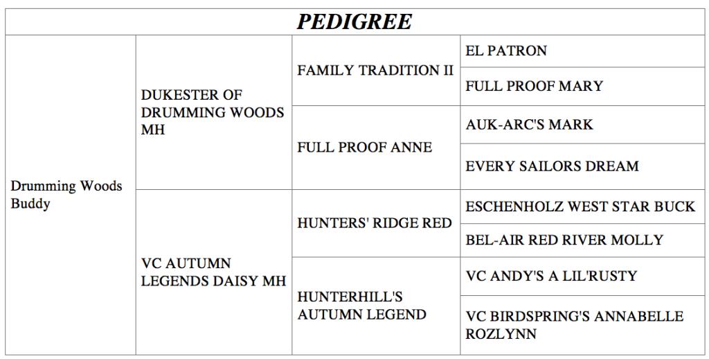 pedigree image